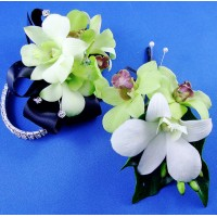 Green and White  Orchid Wrist Corsage